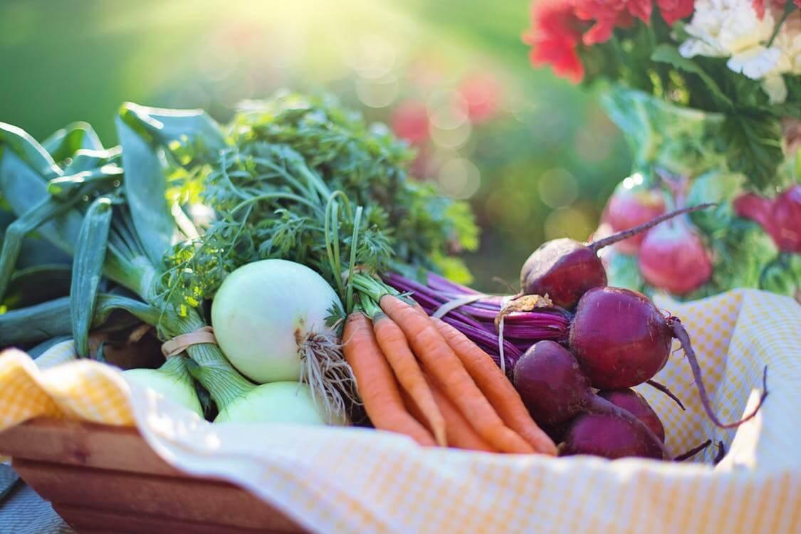 biologische maaltijdboxen